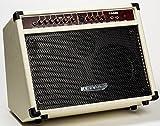 AMPLI Guitare électro-acoustique blanc 2 Canaux (Prise micro, Reverb et Chorus) ~ NEUF