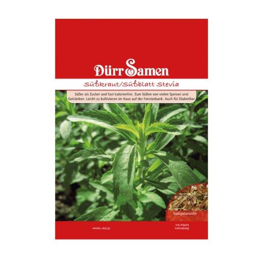 Stevia Samen - Pflanze rebaudiana - Honigblatt - Süßkraut