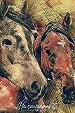 Hausaufgabenheft: Pferde - Grundschule - für Pferdefreunde - mit Stundenplan, Notenübersicht und Terminplaner - für 1 Schuljahr - ca. DIN A5 - glänzendes Softcover