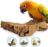 Mr. Petz ® - Korksitzbrett ALLE GRÖSSEN - 100% Bio Vogel Zubehör Käfigausstattung - Vogelspielzeug in der Vogelvoliere für Wellensittich & Co - Vogel Sitzbrett