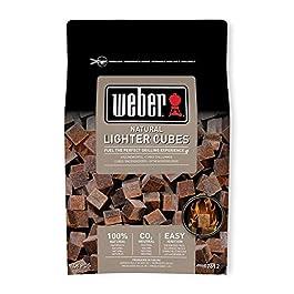 17612 Weber – Confezione da 48 pastiglie sul marrone (casella 15 – Non desempaquetable)