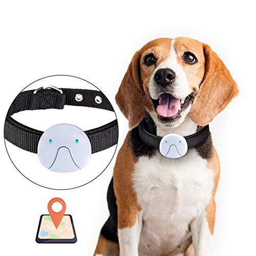 Rastreador de mascotas Kuoser Sin tarifas mensuales, collar de seguimiento GPS impermeable...