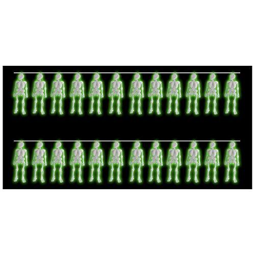 24 fluoreszierenden Skeletten, perfekt für Horror- und Halloween-Partys (Tasche Von Knochen Halloween Requisiten)
