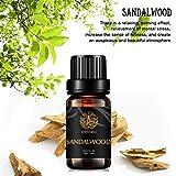 Aromaterapia aceite esencial del sándalo,100% puro olor de sándalo aceite esencial para Difusor,Humidificador,Masaje, 0,33 oz-10 ml de Grado Terapéutico sándalo aromaterapia Fragancia Aceite Esencial