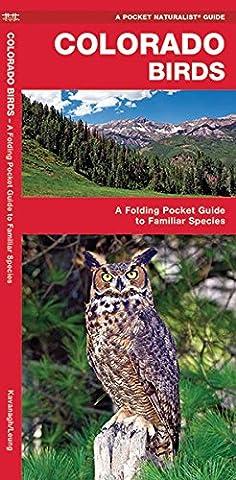 Colorado Birds: A Folding Pocket Guide to Familiar Species (Pocket