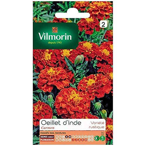 Vilmorin - Sachet graines Oeillet d'inde Carmen