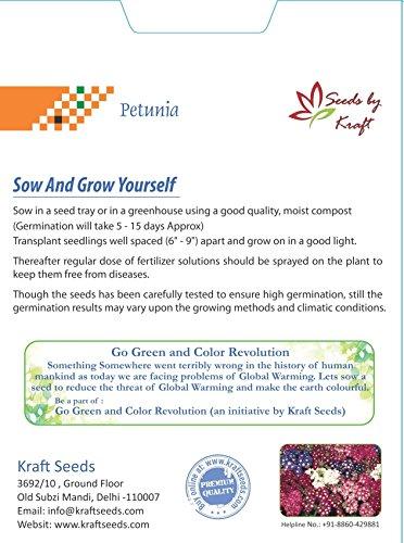 Kraft Seeds Petunia Multiflora Mix Flower Seeds by Kraft Seeds