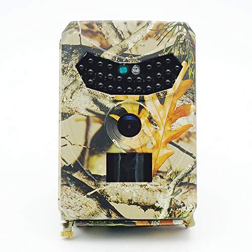 Festnight Wildkamera, Wasserdicht 1080P 12MP Infrarot Nachtsicht Überwachungskamera für Wildtierjagd und Heimsicherheit