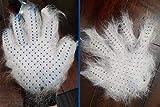 GOLDSTA Fellpflegehandschuh für Katzen Hunde   Fellhandschuh-Pflegehandschuhe   Katzenhandschuh   Katzenbürste inkl. Postkarte mit Katzenmotiv  Geschenkverpackung verfügbar  - 8