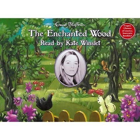 The Enchanted Wood (Faraway Tree)