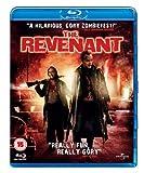 Revenant [Edizione: Regno Unito]