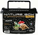 Plastic Haquoss Carrier Nature Box Medium For Reptiles, Amphibians, Fish and Small Animals