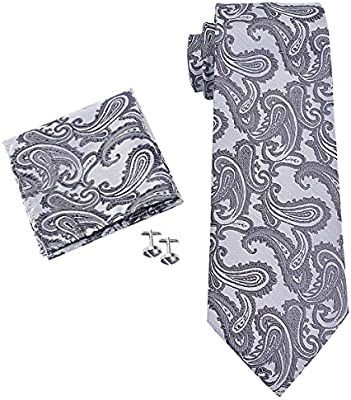 Lazo de la raya de la obra clásica de los hombres tejidos corbata