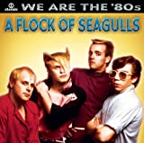 Flock of Seagulls: We Are The'80s (Audio CD)