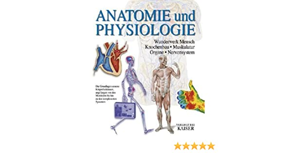 Anatomie und Physiologie: Wunderwerk Mensch - Knochenbau ...