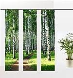 gardinen-for-life Flächenvorhang Birkenwald Set, 3 Frühlings - Schiebevorhänge, Jew. Gr.60x245 cm
