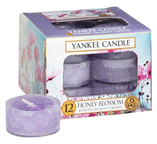 Yankee Candle Teelicht, Honey Blossom, Duftkerze, Stövchenlicht, 12er Pack, Teelichte, 1254070E