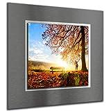 bilder-paradies Wandbild Wandbilder auf Alu-Dibond Bild Bilder Wohnraumaccessoires Wohnraumdekoration Wald Natur Sonne 8101-1Ba