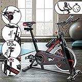 Spin Bike Professionale | Ergometro, Regolatore di Velocita, Sedile e Manubrio Regolabili, Display & Sensori delle Pulsazioni | Bicicletta da Camera, Bici da Fitness