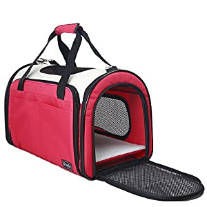 Petsfit Dog Carrier