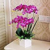 LVLIDAN künstliche Blume Kunstblumen real touch Phalaenopsis,Set,Topfpflanzen,Seidenblumen,Violett