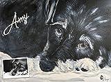 Hund Katze Maus Portrait in Acryl auf 60 x 80 cm 3D Keilrahmen nach Fotovorlage