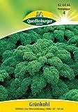 Grünkohl, Vitessa - 10 g