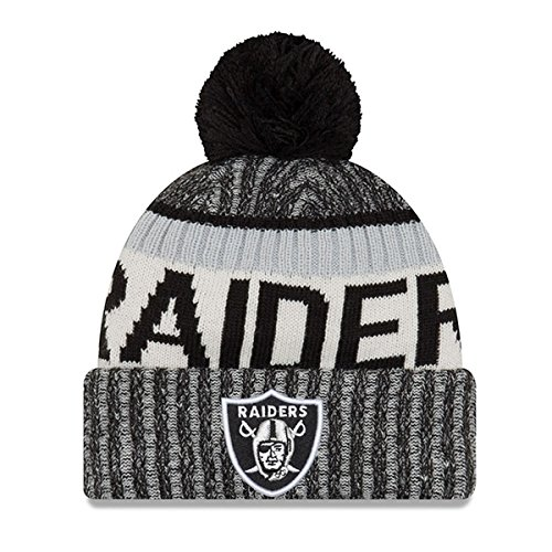 Oakland Raiders #2745
