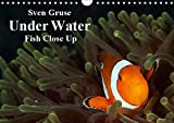 Sven Gruse Under Water - Fish Close Up (Wall Calendar 2019 DIN A4 Landscape): Enjoy the impressive underwater world (Monthly calendar, 14 pages ) (Calvendo Sports)