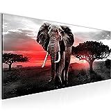 Bilder Afrika Elefant Wandbild Vlies - Leinwand Bild XXL Format Wandbilder Wohnzimmer Wohnung Deko Kunstdrucke Rot Grau 1 Teilig -100% MADE IN GERMANY - Fertig zum Aufhängen 001212b