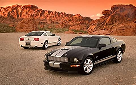 Ford Mustang Customized 38x24 inch Silk Print Poster Affiche de la Soie/WallPaper Great Gift