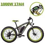 eBike_RICHBIT 022 Bicicleta Eléctrica Fat Tire neumático Bicicleta Eléctrica Cruiser...