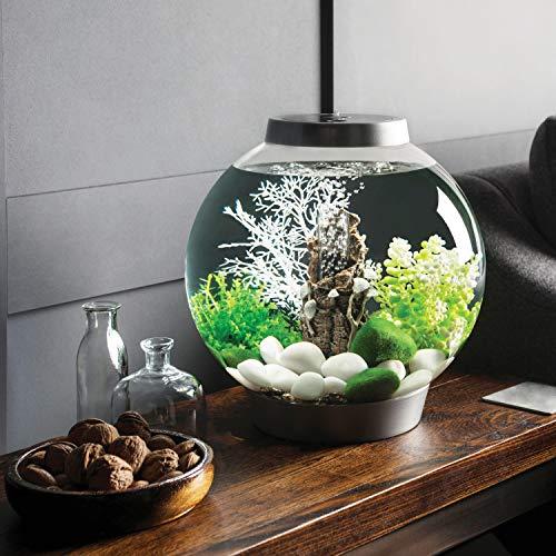 Baby biOrb Kugel Aquarium 15 l – Silber – Design Komplett Aquarium 15 Liter - 5