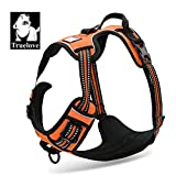 TrueLove Dog Harness TLH5651 No-pull Reflective Stitching Ensure Night Visibility, Outdoor Adventure Big
