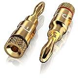 Soundqualität von primewire | Anschluss Adapter für Lautsprecher Hifi | conector| Stecker Typ Banana |para Lautsprecher Kabel bis 6,8mm | vergoldete Kontakte | Datendurchsatz optimale | Qualität Saubere Sound-Lautsprecher | einfache Montage | für Kabel, Empfänger HiFi/AV-Receiver/Verstärker/Messtechnik