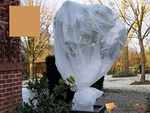 Nature housse de gelée végétale en toison beige 2x10 m 6030095