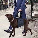 Imbracatura Supporto Portatile per Cani Confortevole Riabilitazione Cane Disabili Cinghia di Assistenza Difficile Camminare(S Nero)