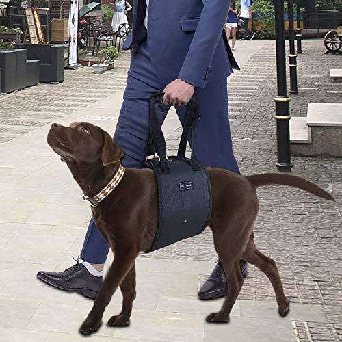 Hund Lift Support Geschirr Sling Geschirr mit Griff für Old Behinderungen oder Arthritis Verletzte Hunde und schwache Hinterbeinen