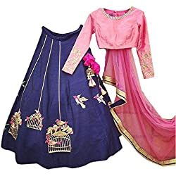 Varona Creation Women's Special Lehenga Choli (VC0001 Color: Pink And Blue Free Size)