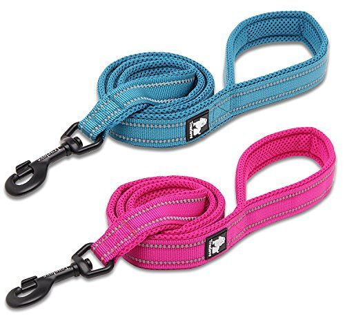 Kaka-Mall-Heavy-Duty-Durable-Pet-Lead-Leash-Padded-Mesh-Soft-3M-Reflective-Nylon-for-Outdoor-110CM-Blue