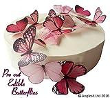 12 x Vorgeschnittene schöne rosa Schmetterlinge essbares Reispapier/Oblatenpapier Kuchendekoration, Dekoration für Cupcake Kuchen Dessert, für Geburtstag Party Hochzeit Babyparty (L)