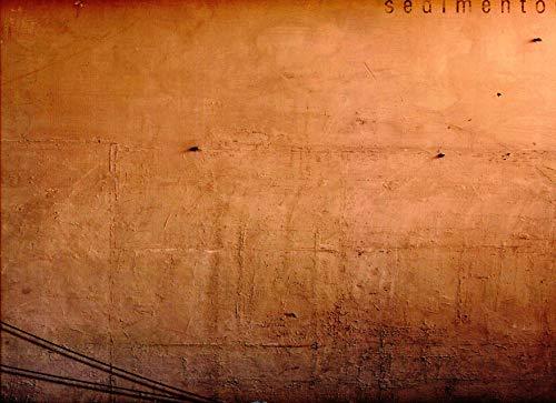 Atlas Sociocomercial De La Comunitat Valenciana. 2009 (+ CD)
