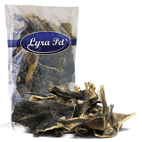 Lyra Pet 1 kg Rinderkopfhaut mit Fell Hundefutter Kauartikel Leckerli - Fell Hundefutter