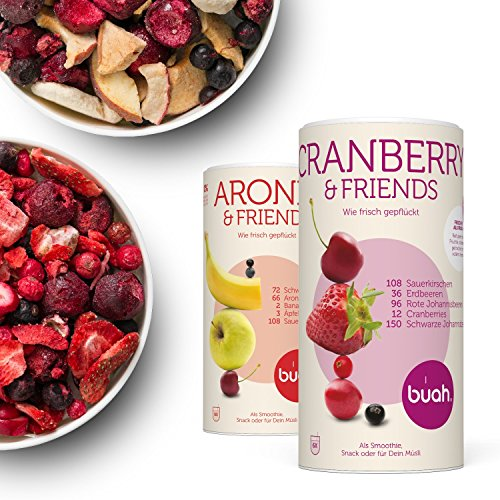 rüchte & Superfoods für leckere Früchte-Smoothies und gesunde Snacks zwischendurch | BUAH® SMOOTHIE-FRÜHSTÜCKS-KORB | 2x BigTube | 100% Frucht | 0% Zusätze | Healthy Snacks (Gesunde Halloween Snacks)