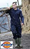 Dickies Coverall Overalls Boiler Suit Redhawk Stud Economy Mens Pen Pocket On Sleeve Two Chest Pockets One Back Patch Pocket Full Back Elasticated Waistband Hardwearing Functional Workwear WD4819