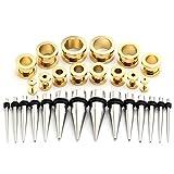 JSDDE Piercing Schmuck Set 14 Paare Edelstahl Knochenstab Dehnungssichel Taper Dehnstab Dehnungs Kit Ohrpiercing 2-10mm(Gold)