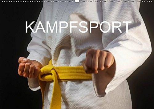Kampfsport (Wandkalender 2019 DIN A2 quer): Fotografien vom Kampfsporttraining (Monatskalender, 14 Seiten ) (CALVENDO Sport)