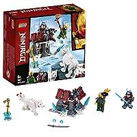 LEGO City Arctic Exploration Team 60191 Building Kit (70 Pieces)
