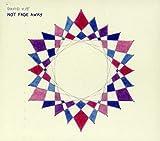 Songtexte von David Kitt - Not Fade Away