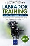 Labrador Training - Hundetraining für Deinen Labrador: Wie Du durch gezieltes Hundetraining eine einzigartige Beziehung zu Deinem Labrador aufbaust (Labrador Band, Band 2) - Claudia Kaiser
